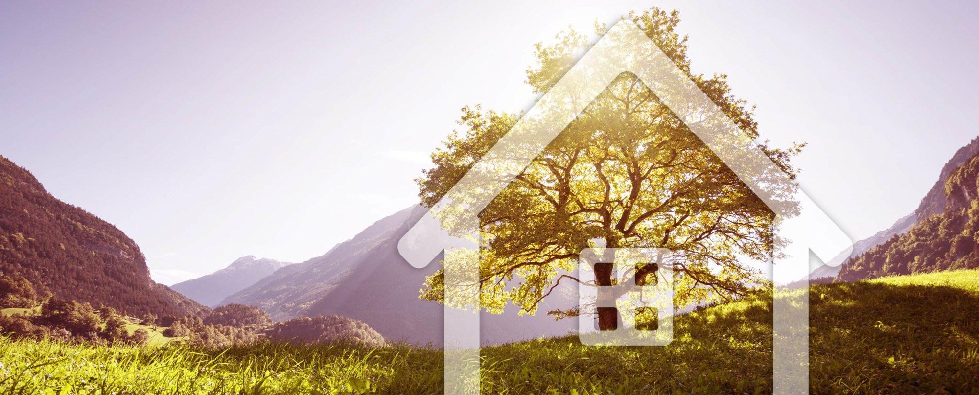 Haus Symbol vor Baum