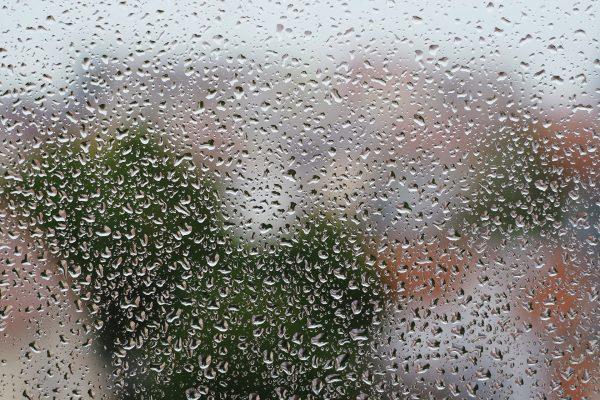 schimmel am Fenster